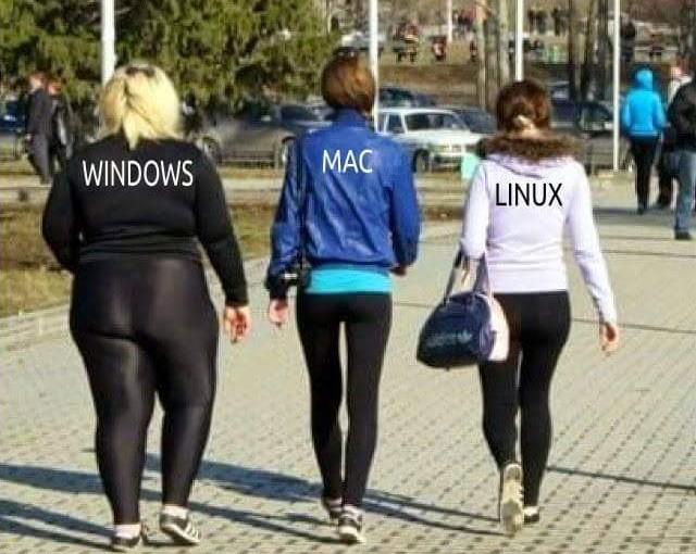 Qual é o teu sistema operativo??